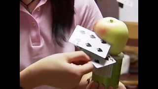 Ninja-Wurfmeister schneidet Gemüse mit Spielkarten