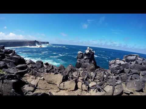 Galapagos Adventure 2016   Short