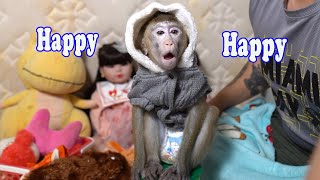 Oh  ! Smart monkey Too is happy to wear new clothes.