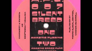 Silent Breed - Amazing Space Funk