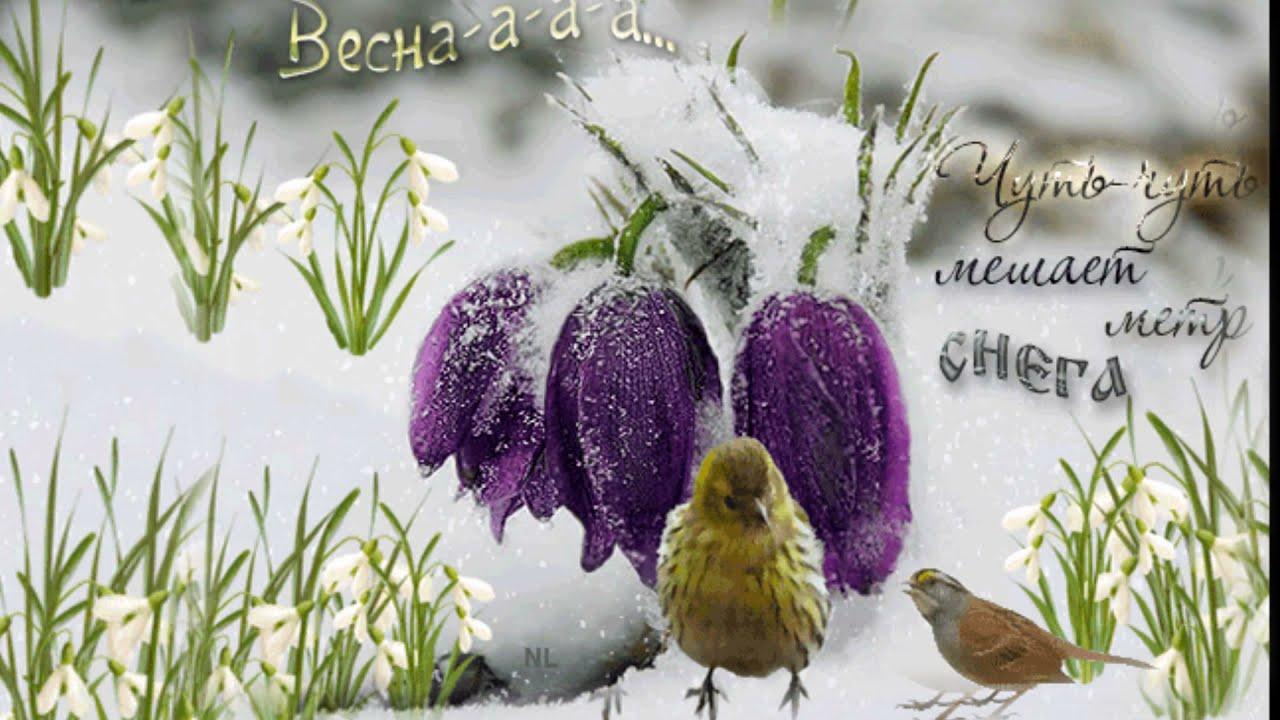 картинка прощай зима привет весна прихожая современном