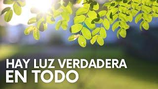LUZ VERDADERA