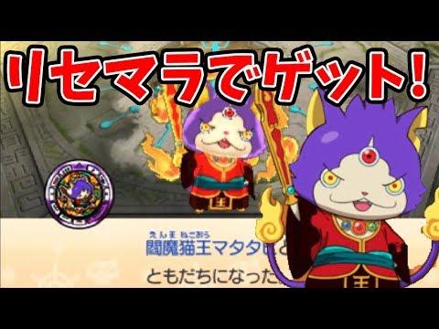 妖怪ウォッチバスターズ2 リセマラで閻魔猫王マタタビがゲット可能だと