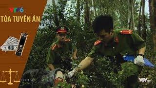Cuồng Ghen - Tòa Tuyên Án VTV6