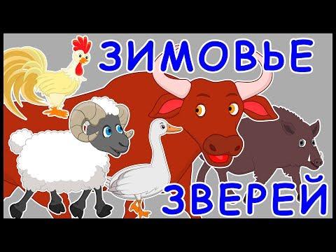 Зимовье зверей. Русская народная сказка