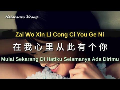 Zai Xin Li Cong Ci Yong Yuan You Ge Ni 在我心里从此有个你 - Zhang Wei Jia 张玮伽