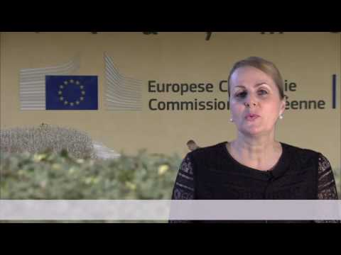 Cooperation in interpretation between the European Union and the Republic of Cuba