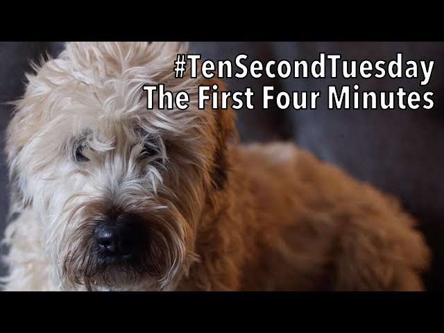 #TenSecondTuesday: The First Four Minutes