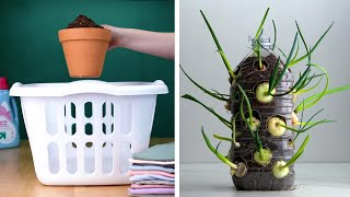 14 Clever Plant Hacks That Will Really Grow on You! Blossom