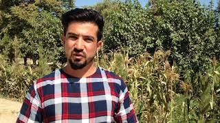 Afg'onistonlik Bismillah Sidiqyor lotin yozuvi haqida