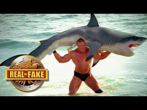 CRAZY MUSCLEMAN  LIFTS SHARK - Real or fake?