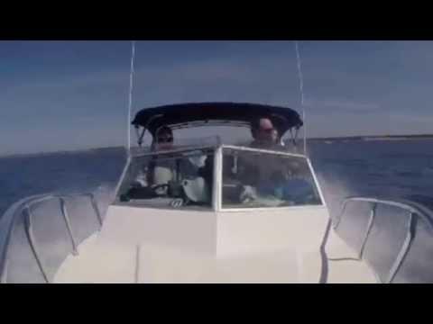 Edencraft 6m offshore