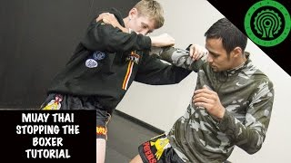 Muay Thai Stopping the Boxer Tutorial