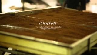 Производство чая. Шестой этап. Купажирование.(, 2014-10-16T10:57:02.000Z)