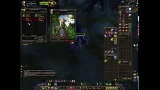 The Wardens Reputation Vendor - Marin Bladewing (Wardens Emissary)