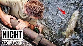 Dicke Forellen auf Gummifisch (beim Streetfishing!)