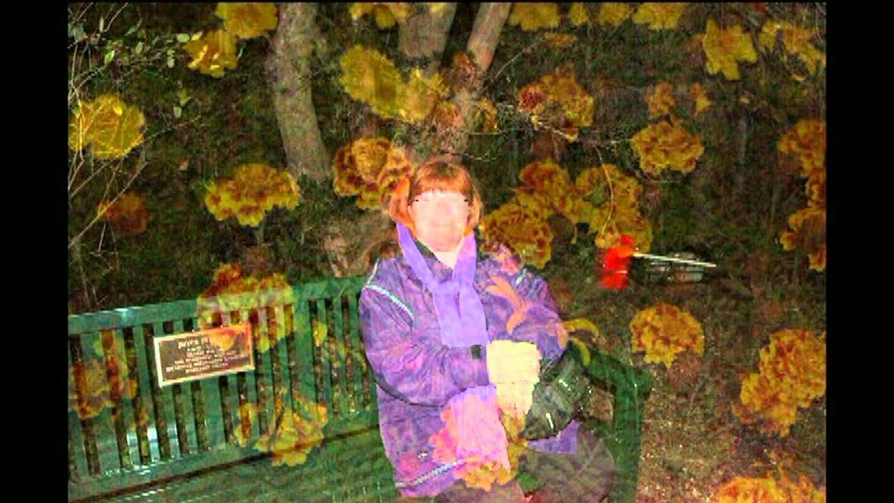 Brookgreen Garden 39 S Night Of A Thousand Candles Youtube
