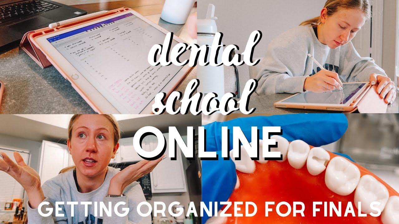 Dental School Vlog | Preparing for Online Finals!