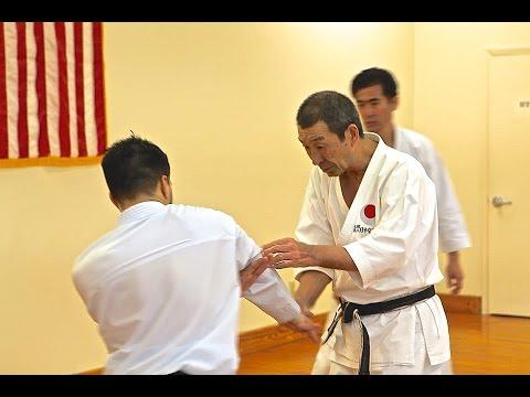 Osaka Shihon 8th Dan JKA Living Textbook of Karate
