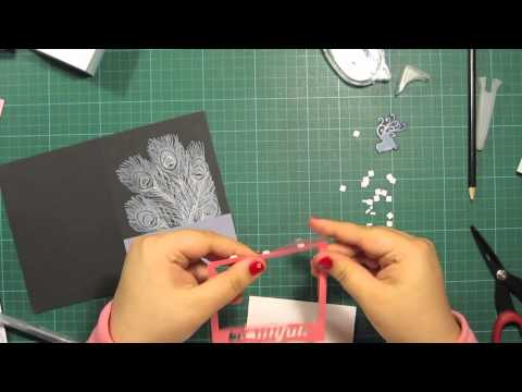 peacock-feather---card-making-tutorial,-using-a-polaroid-frame