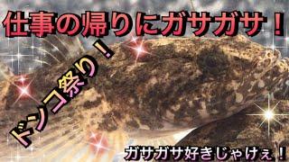 【アクアリウム】ガサガサ好きじゃけぇ!仕事の帰りにガサガサ!【ドンコ祭り】【広島】