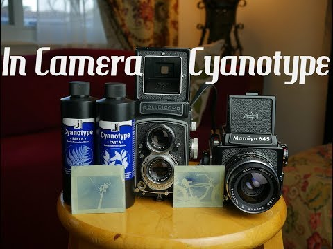 In Camera Cyanotype Tutorial Alternative Process Photography