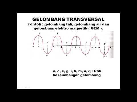 Gelombang Transversal Youtube