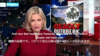 致死性のハンタウイルスがヨセミテ国立公園に カリフォルニア