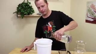 How to cold brew coffee using the Toddy Cold Brew System Video