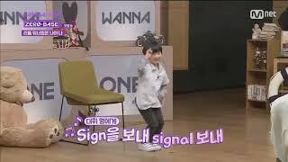 Wanna One Daehwi + little boy dance to TWICE 'SIGNAL'| SO CUTE