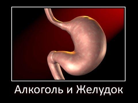 Что такое алкогольный гепатит, цирроз, стеатоз