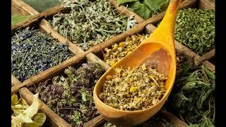 30 Bin Yıl Önce Şifa Veren Bitkilerin Ağrı Kesici İltihaplanmayı Önleyici Özellikleri Kullanılıyormuş