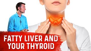 Why a Fatty Liver Can Slow Your Thyroid (Hypothyroid)