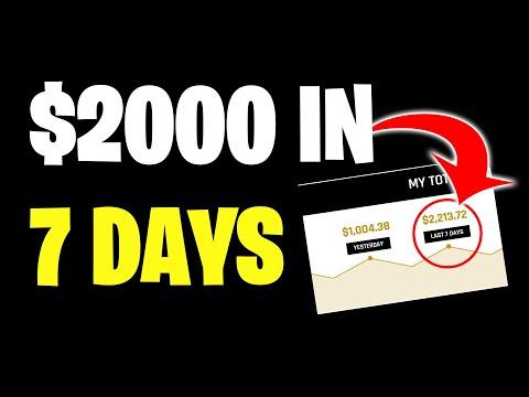 EARN $2000 IN 7 DAYS *PROOF* (MAKE MONEY ONLINE)