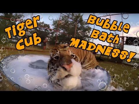 Tiger Cub Bubble Bath MADNESS!!!