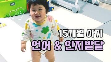 15개월 아기 언어 발달 & 인지 발달