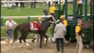 ==HQ== 134th preakness stakes rachel alexandra wins!