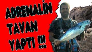 Shore Jig 5.3kg Yazılı Orkinos Avı