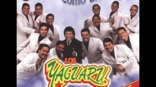 yaguaru - Cuentale