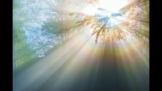 Энергия света Набор энергии Улучшение жизни Восстановление сил