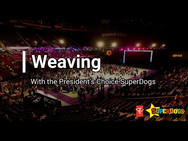 Weaving With The President's Choice SuperDogs | Dog Fun