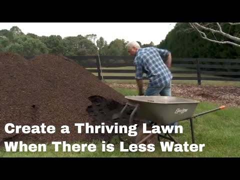 Simple Steps to a Thriving Lawn and Garden on Less Water