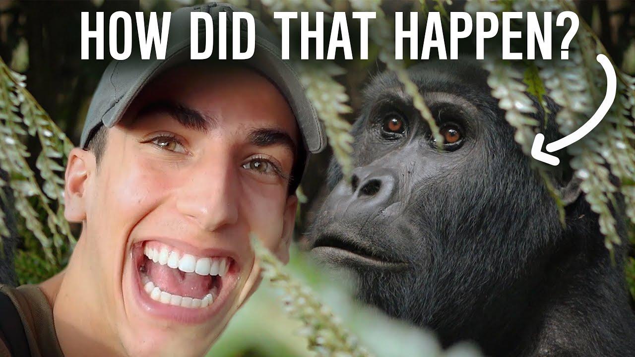 I Took a Selfie with a GORILLA (Uganda Africa Travel Vlog)   Roy Adin