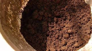 Earth Worm for Composting   Worm Composting