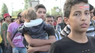 Újabb migráns áradat