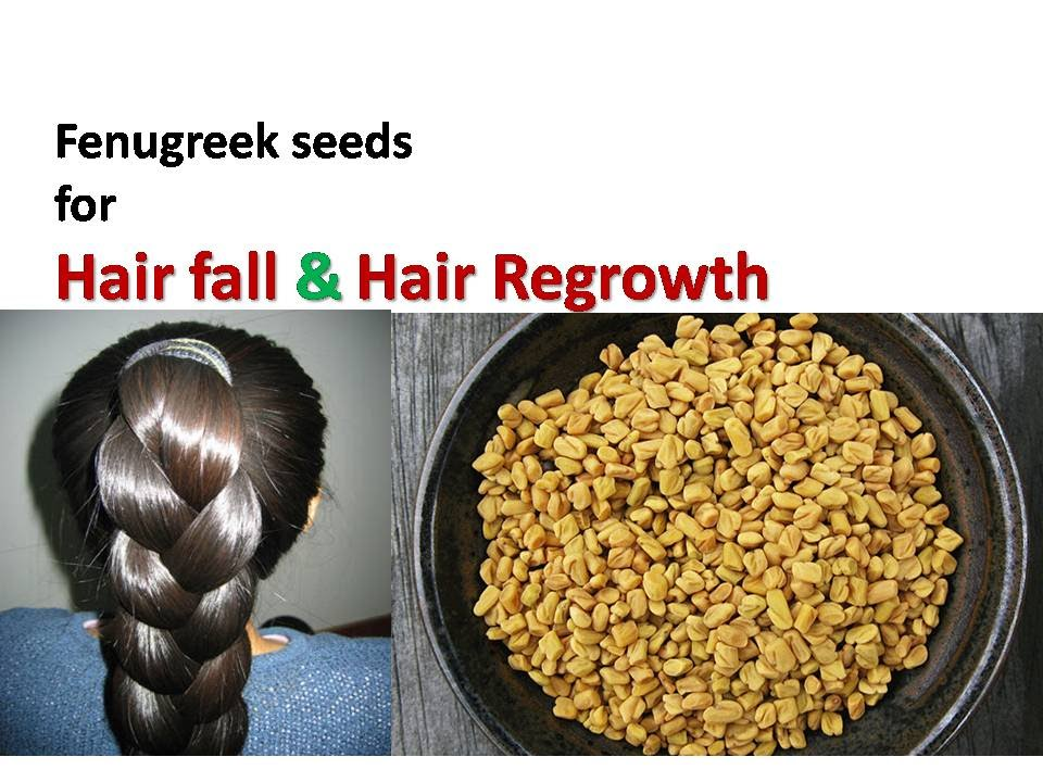Fenugreek Seeds Hair Mask For Hair Growth, Dandruff & Hair ... Fenugreek Seeds For Hair
