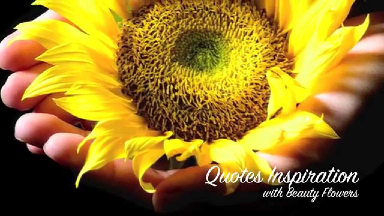 Quotes inspiration with beauty flowers youtube dhlflorist Images