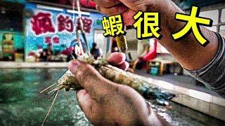 【老蟹愛釣蝦】瘋釣蝦公蝦池裏的蝦為什麼跟大公蝦池裏的蝦差不多大阿?這尺寸是正常的嗎?
