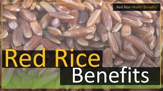 Brown / Red Rice Health Benefits