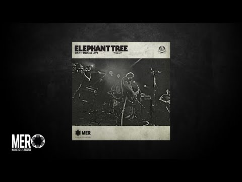 Elephant Tree - Circles (Live in Studio)